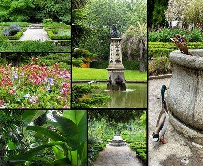 En oto o nos vamos al bot nico el blog de la emt nos for Jardin botanico madrid horario