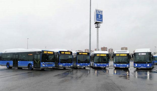 ¡Estrenamos autobuses!